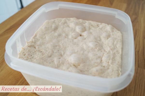 Masa fermentada de pan